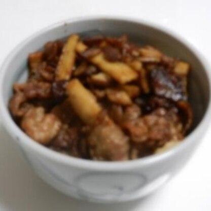 油を使わず、豚肉から出る脂で炒めました。ごはんの上に乗っけて「丼」にして食べました。次回は炒めものの下にレタスを敷いてみようと思います。
