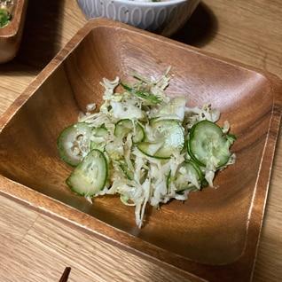キャベツときゅうりの洋風ポン酢サラダ