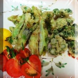 祝蕾(しゅんらい)とパセリの天ぷら