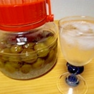 1週間で作れる梅シロップの作り方♪梅ジュース