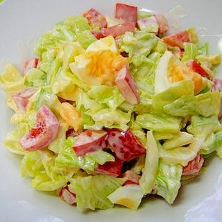 キャベツとパプリカ卵のサラダ