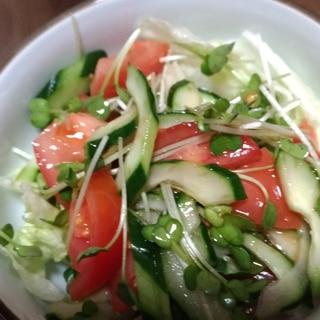 フレンチドレッシングで食べる生野菜