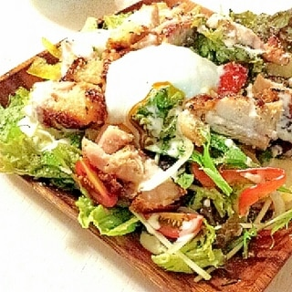チキンソテーサラダ