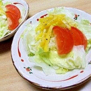 サッパリドレッシングで食べる♪イタリアンサラダ