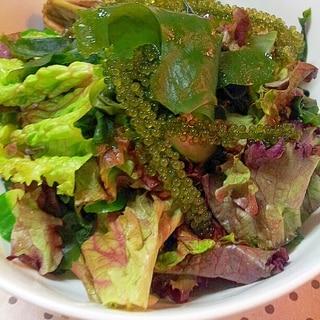 海ぶどうとわかめの海藻サラダ♪