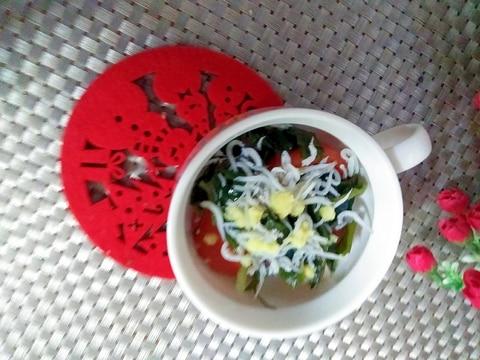 トマトわかめとしらすのジンジャーサラダ
