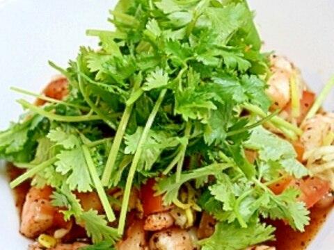 パクチーたっぷりのタイ風海老&トマトサラダ