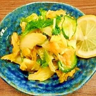 白菜とわさび菜☆浅漬け