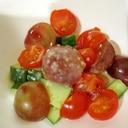ミニトマトとレッドグローブのサラダ