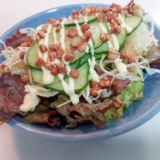 レタスとキャベツと胡瓜と煎りはと麦のサラダ