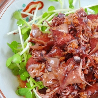ご飯が旨い! ピリ辛「ホタルイカ甘辛煮」