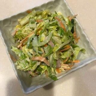 簡単!野菜たっぷりコールスロー!