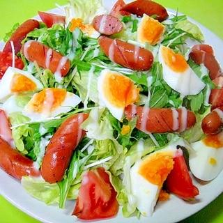ウインナーとゆで卵のグリーンサラダ
