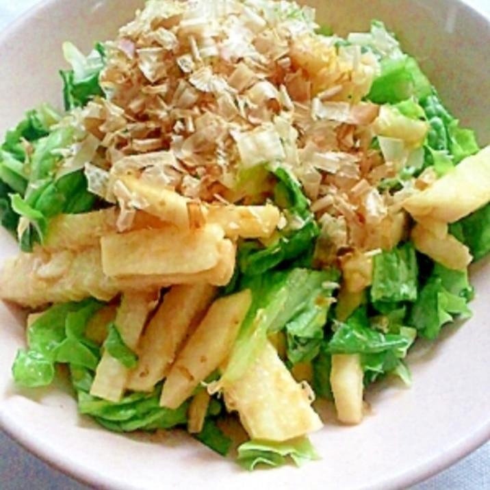 【栄養美人肌】長芋とレタスのわさび酢醤油サラダ