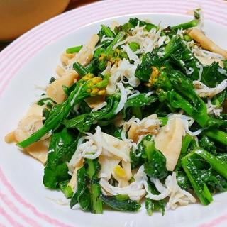 春爛漫 かき菜とタケノコの炒め物