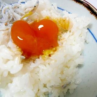簡単おいしい 卵黄の醤油漬け ごはんが進む!