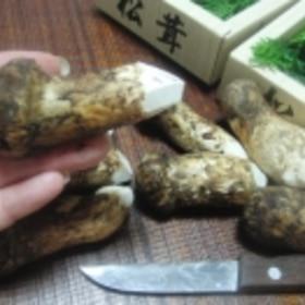 松茸の保存方法