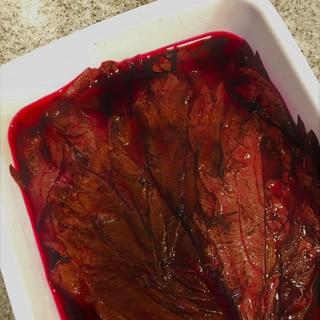 赤紫蘇の葉の梅酢漬け