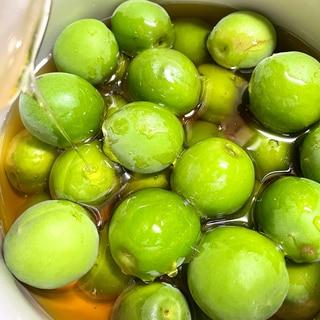 梅シロップ 梅の蜂蜜煮