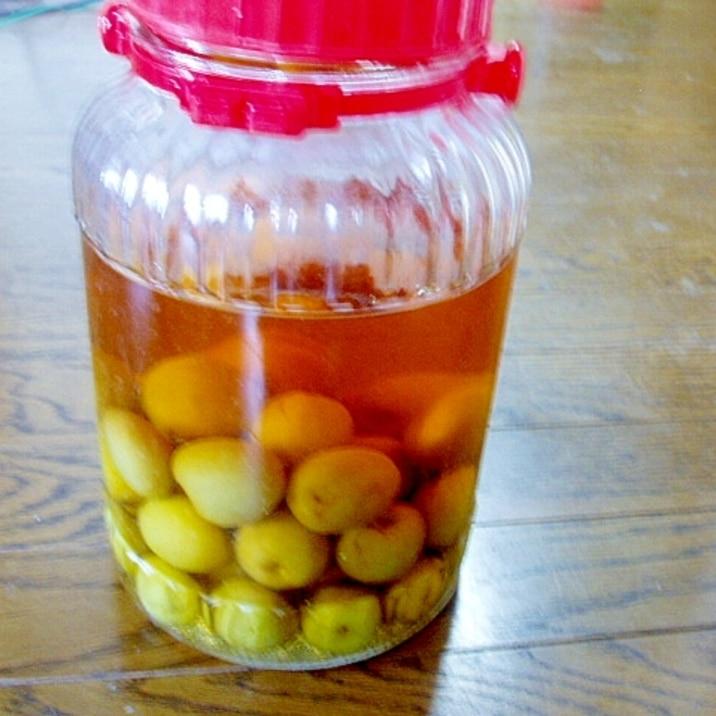甘すぎない!我が家の梅酒