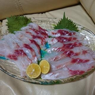 【釣り魚料理】チヌのしゃぶしゃぶ