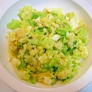 愛犬用♪ 白身魚とゆで卵と野菜色々ごはん