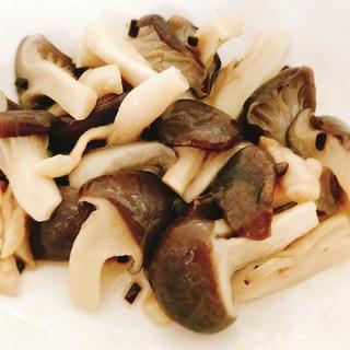 【夫婦のおつまみ】ごま油と塩昆布で作るやみつき平茸