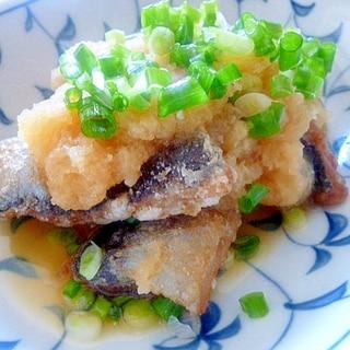 秋刀魚のしぐれ煮