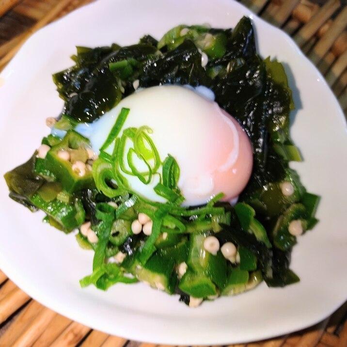 オクラ☆ワカメ温泉卵