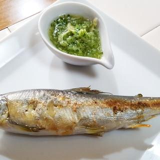 鮎の塩焼きキュウリソース