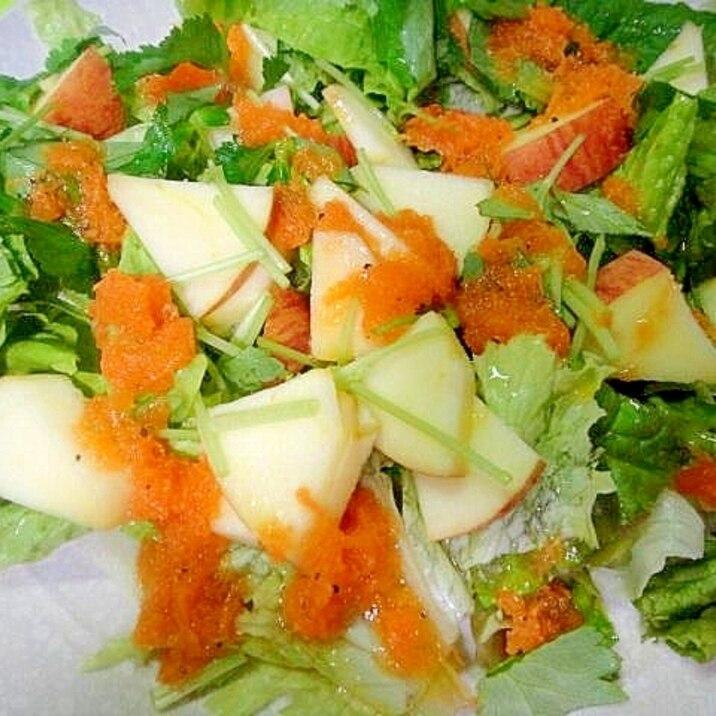 リンゴと三つ葉レタスの人参ドレッシングサラダ
