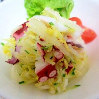白菜、タコ、キュウリのサラダ