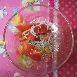 夏にオススメ〜《トマトとじやこの香味野菜和え》