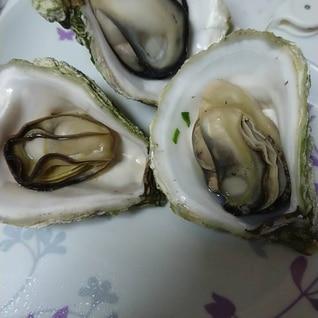 レンジでチン☆岩牡蠣の美味しい食べ方(^○^)