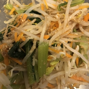 野菜たっぷりナムル