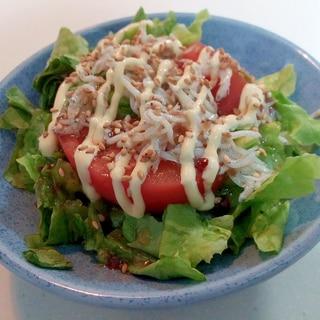 グリーンレタスとトマトと釜揚げしらすの和風サラダ
