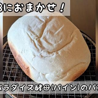 パラダイス酵母のパン #ホームベーカリー #HB