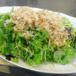 三つ葉とわさび菜のおかかサラダ