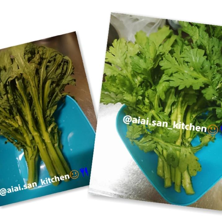 【野菜】しなしな野菜が復活 春菊 レタスなど