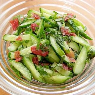 すぐ食べられる!シャキッと塩なし漬物サラダ(胡瓜)