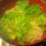 パクチーとキャベツ、ねぎのスープ