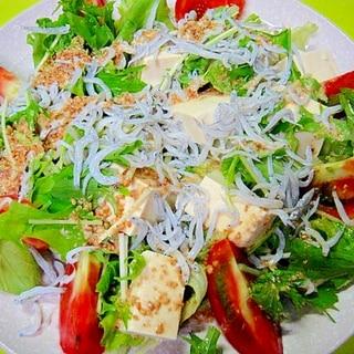 豆腐と水菜しらすのゴマドレッシングサラダ