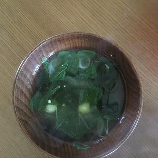 モロヘイヤわかめミョウガの味噌汁