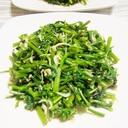 かき菜のしらす炒め