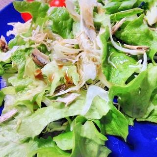 いりこのグリーンサラダ