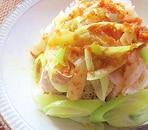 鷄むね肉と長ねぎのレンジ蒸し中華風たれがけ