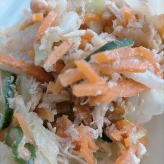 カラフル野菜のツナサラダ