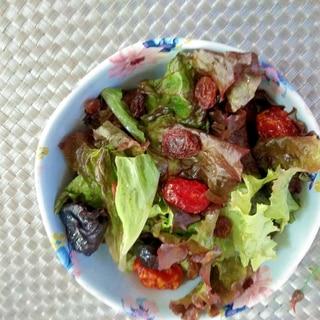 サラダ♪ドライフルーツ畑