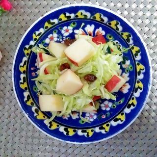 酸っぱいキャベツとりんごのサラダ