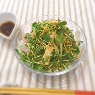 簡単☆豆苗とパリパリ麺のサラダ♪